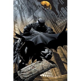 DC Comics pack posters Batman Night Watch 61 x 91 cm (5)