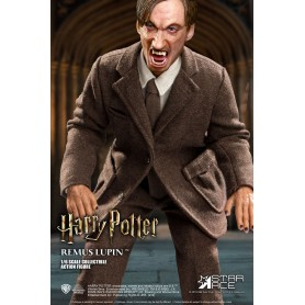 Harry Potter My Favourite Movie figurine 1/6 Remus Lupin Deluxe Ver. 30 cm
