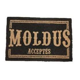 HARRY POTTER PAILLASSON MOLDUS ACEPTES